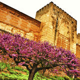 La Alhambra i Granada, Spanien arkivbilder