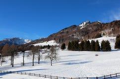 la alta montaña llamó a SPITZ con nieve en invierno en Ital septentrional foto de archivo