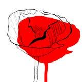 La amapola estilizada florece el ejemplo Imagenes de archivo