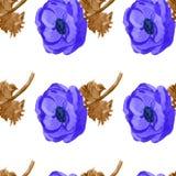 La anémona de la acuarela florece el modelo inconsútil Imagen de archivo libre de regalías
