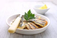 La anchoa fragmenta los buñuelos de la anchoa, cocina de Odessa cocinada Imagenes de archivo