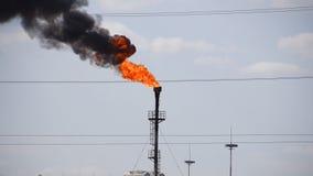 La antorcha del gas que fuma Contaminación ambiental Sistema de la antorcha en un campo petrolífero almacen de metraje de vídeo