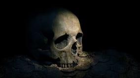 La antorcha enciende para arriba el cráneo en la pila de monedas de oro metrajes