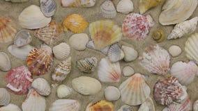 La aproximación del mar descasca la mentira en la arena, visión superior almacen de video