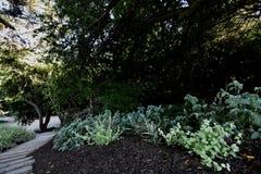 La arboleda conmemorativa San Francisco, 2 de las AYUDAS nacionales fotografía de archivo