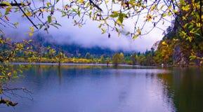 La arboleda y los lagos colorized Foto de archivo libre de regalías