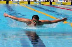 La arena internacional de la reunión de XXIIIe de la natación Foto de archivo libre de regalías