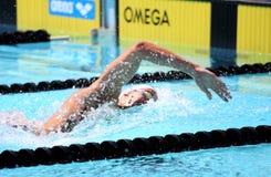 La arena internacional de la reunión de XXIIIe de la natación Fotos de archivo libres de regalías