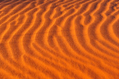 La arena ondula (los modelos) Imagen de archivo