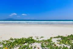 La arena y la onda blancas varan paisaje de la luz del día del cielo azul Imagenes de archivo