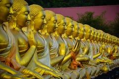 La asamblea de imágenes de Buda Fotografía de archivo libre de regalías