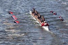 La asociación del Rowing de Sammamish compite con en el jefe del Regatta de Charles Foto de archivo libre de regalías
