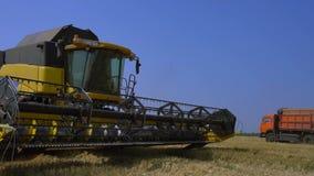 la Associazione-mietitrice riunisce il grano stock footage