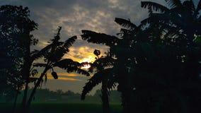 la atmósfera por la mañana fresca Fotos de archivo libres de regalías