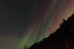 Aurora verde sobre las montañas y los árboles Imagen de archivo