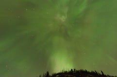 Aurora boreal sobre árboles Foto de archivo libre de regalías