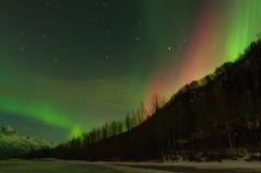 Aurora verde y roja sobre las montañas y los árboles Imágenes de archivo libres de regalías