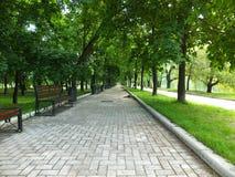 La avenida de parque cerca del convento de Novodevichy Fotografía de archivo libre de regalías