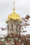 La bóveda de la iglesia en el centro de Moscú Imágenes de archivo libres de regalías