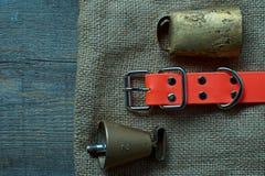 La búsqueda de los accesorios para el perro de caza miente en un paño viejo y de madera Imagen de archivo libre de regalías
