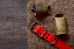 La búsqueda de los accesorios para el perro de caza miente en un paño viejo y de madera Fotografía de archivo libre de regalías