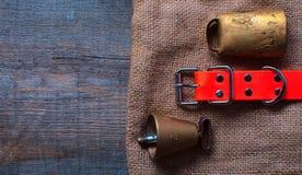 La búsqueda de los accesorios para el perro de caza miente en un paño viejo y de madera Imágenes de archivo libres de regalías
