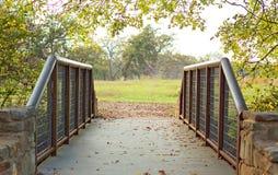 La bacca balza ponte fotografie stock