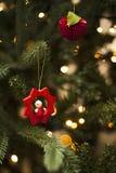 La bagattella rossa di Natale con l'albero e l'ornamento si inverdiscono Immagini Stock