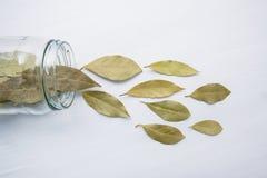 La baia secca lascia in barattolo di vetro su bianco Fotografia Stock