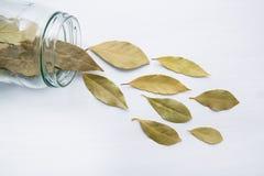 La baia secca lascia in barattolo di vetro su di legno bianco Immagini Stock Libere da Diritti