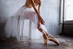 La bailarina delgada estupenda en un vestido negro está presentando en el estudio Imagen de archivo libre de regalías