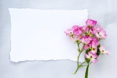 La bailarina rosada subió en fondo gris de la tela con el Libro Blanco Imágenes de archivo libres de regalías