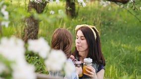 La bambina bacia la giovane madre sulla natura stock footage