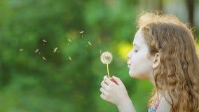 La bambina chiusa lei occhi e respira i denti di leone gialli in Th fotografie stock