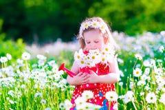 La bambina con acqua può in un giacimento di fiore della margherita Immagini Stock Libere da Diritti