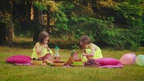 La bambina due in vestiti sta giocando al picnic archivi video