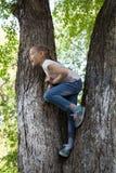 La bambina entusiasta che si siede su un albero Immagini Stock Libere da Diritti