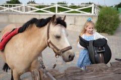 La bambina pulisce e pettina il suo cavallino e lo sella immagini stock libere da diritti
