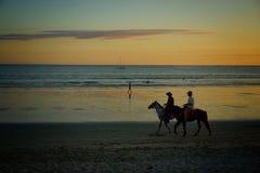 la bambina sta montando un cavallo Immagini Stock