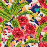 La banana dell'ibisco lascia il fondo multicolore Fotografia Stock