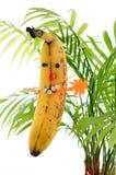 La banana divertente gioca la mente matrice Immagini Stock