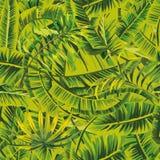 La banane quitte la jungle verte sans couture illustration libre de droits
