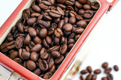La Banca dei chicchi di caffè Fotografie Stock Libere da Diritti