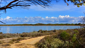 La Banca del lago Teti Fotografia Stock Libera da Diritti