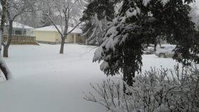 La Banca della neve Immagini Stock