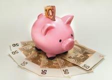 La Banca Piggy con gli euro Immagine Stock Libera da Diritti