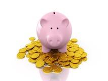 La Banca Piggy con le monete di oro Immagini Stock