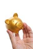 La Banca Piggy dorata Immagine Stock Libera da Diritti