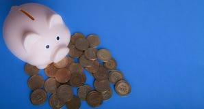 La Banca Piggy e monete immagini stock