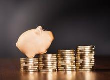 La Banca Piggy e monete Fotografia Stock Libera da Diritti